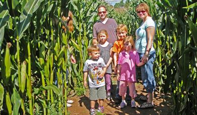 A family in the Giant Maze.and Activities Maze