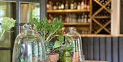 Garden Room & Bar