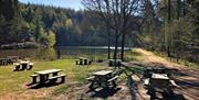 Mallards Cafe at Mallards Pike Lake