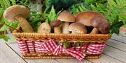 Forage and Feast Cookery Experience at Harts Barn Cookery School