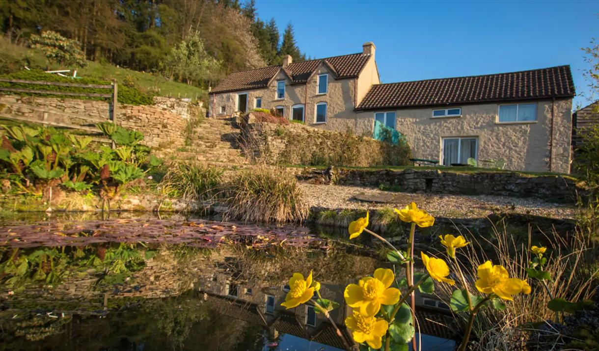 Hill Farm, Tintern