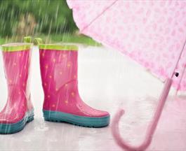 rainy days in devon blog
