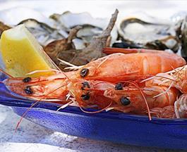 Food Festivals | Devon