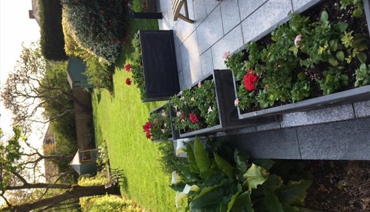 St Leonards Open Gardens 13 Leighdene Close