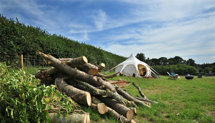 Camp Dartington