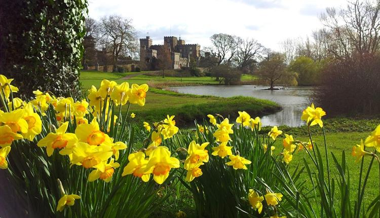 Spring at the Castle