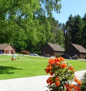 The Beautiful grounds at Alpine Park Cottages