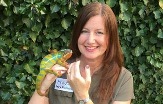 Exotic Animal Handling Sessions