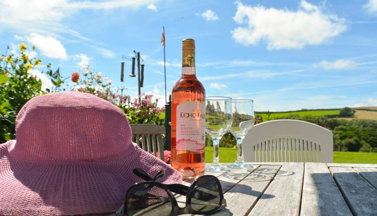 sunny skies, sun glasses, hat, wine