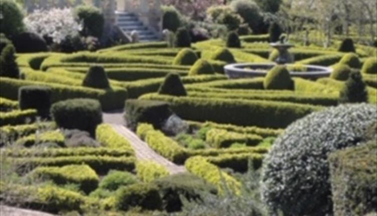 Holcombe Court Open Garden