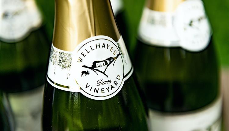 Wellhayes Vineyard 2018 Sparkling Wine Launch