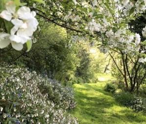 Hospiscare Open Garden