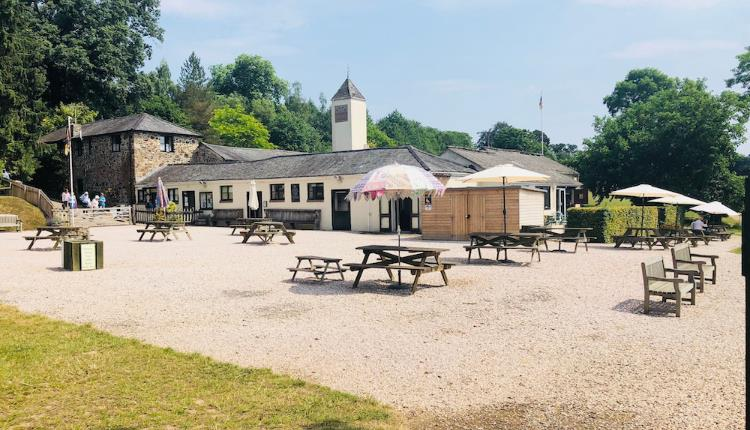 Food and Drink at Canonteign Falls