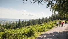 Haldon Forest Park - Forestry England