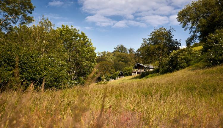 longlands cabin