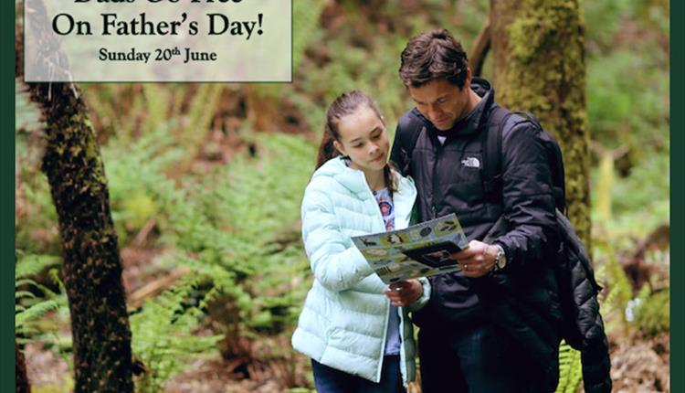 Canonteign Falls Father's Day Fun with Free Entry to Dads