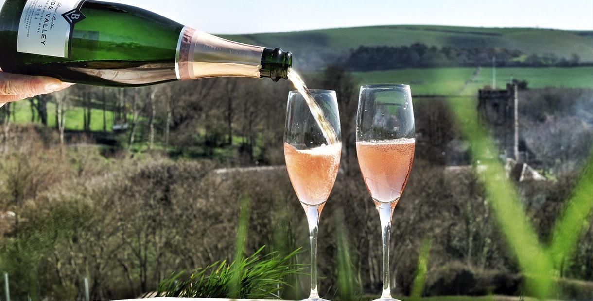 Bridle Valley wine