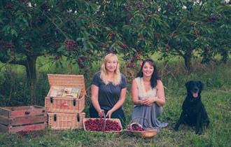 Cherry Picked Hampers