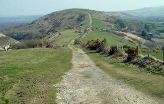 Great Wessex Way, Dorset