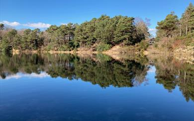 The Blue Pool Nature Reserve & Tearooms, Furzebrook near Wareham.
