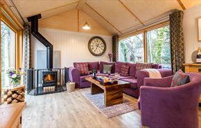Burnbake Forest Lodges sitting room with buring log fire and large sliding patio doors.