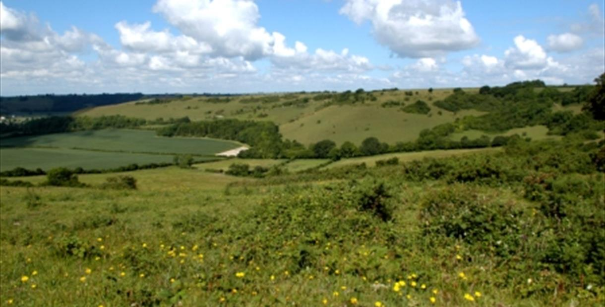 Cerne Valley, Dorset