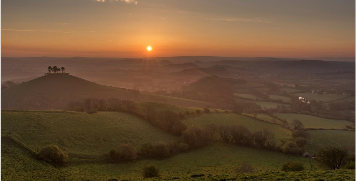 Colmers Hill - Copyright James Loveridge
