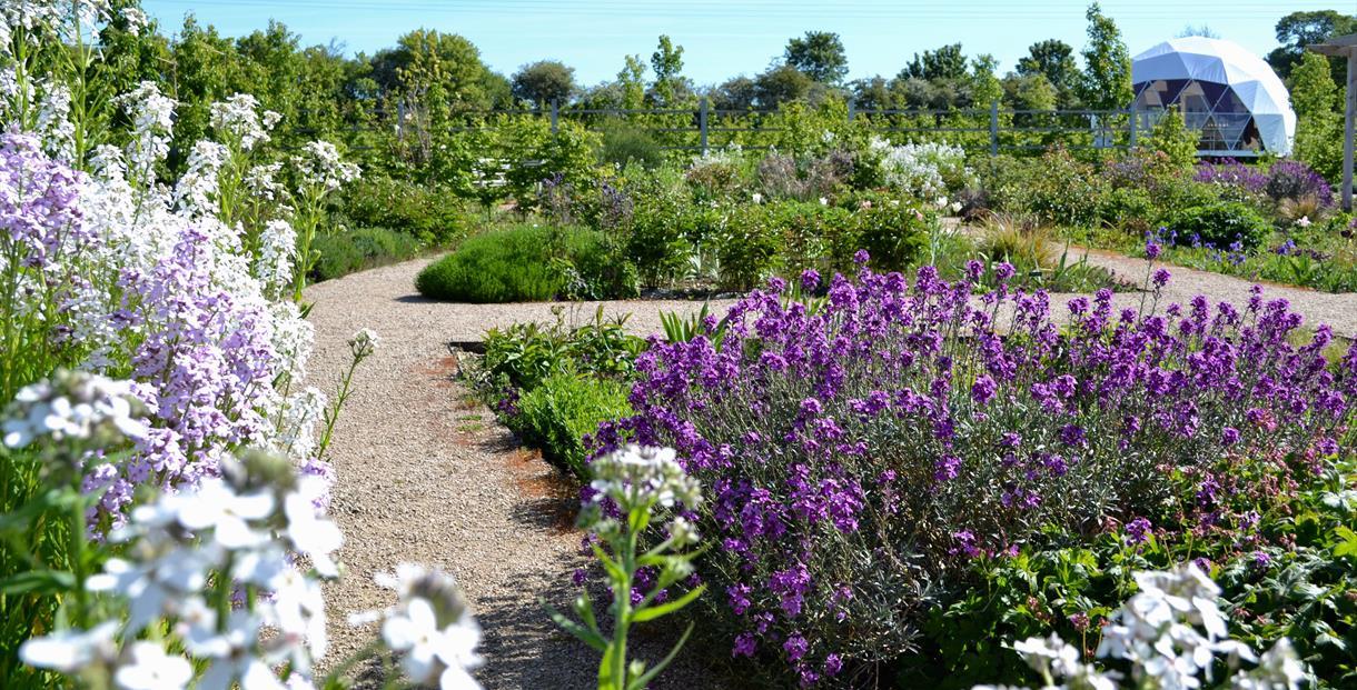 Botanic gardens at Keyneston Mill, Dorset