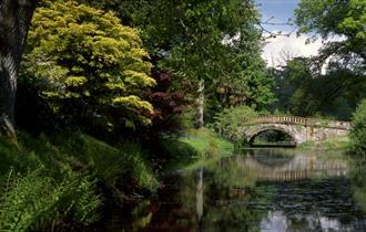 Bridge at Minterne Gardens.