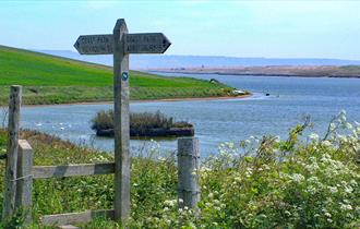 Fleet, Visit Dorset