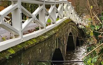 Frampton, Visit Dorset