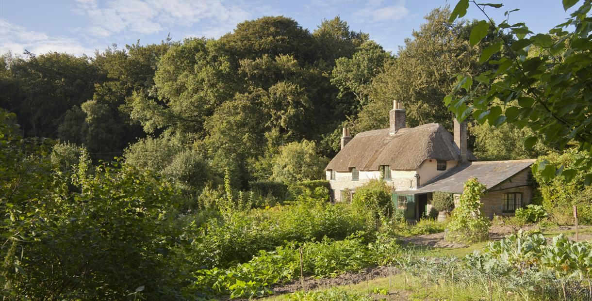 Hardy's Cottage - Thomas Hardy's birthplace (photo credit National Trust Images/Chris Lacey)