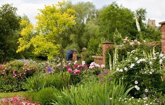 Beautiful garden border filled with flowers