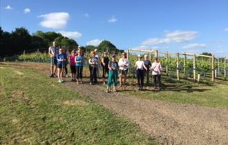 Walkers enjoying the Furleigh Estate Vineyard