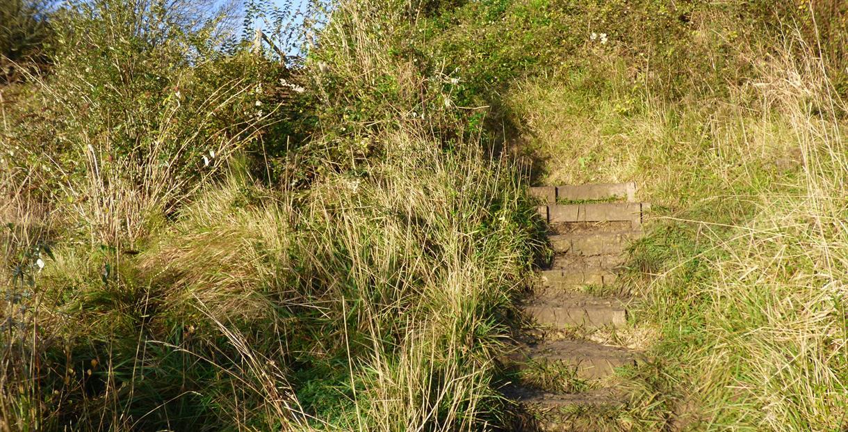 Durlston path