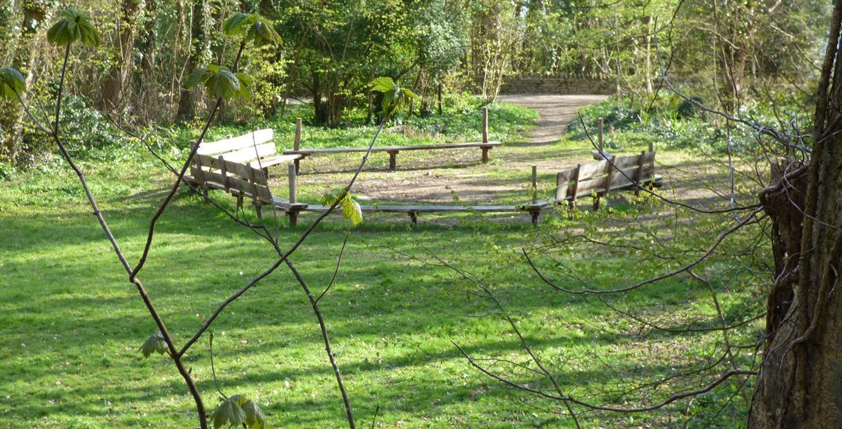 Aviary Glade