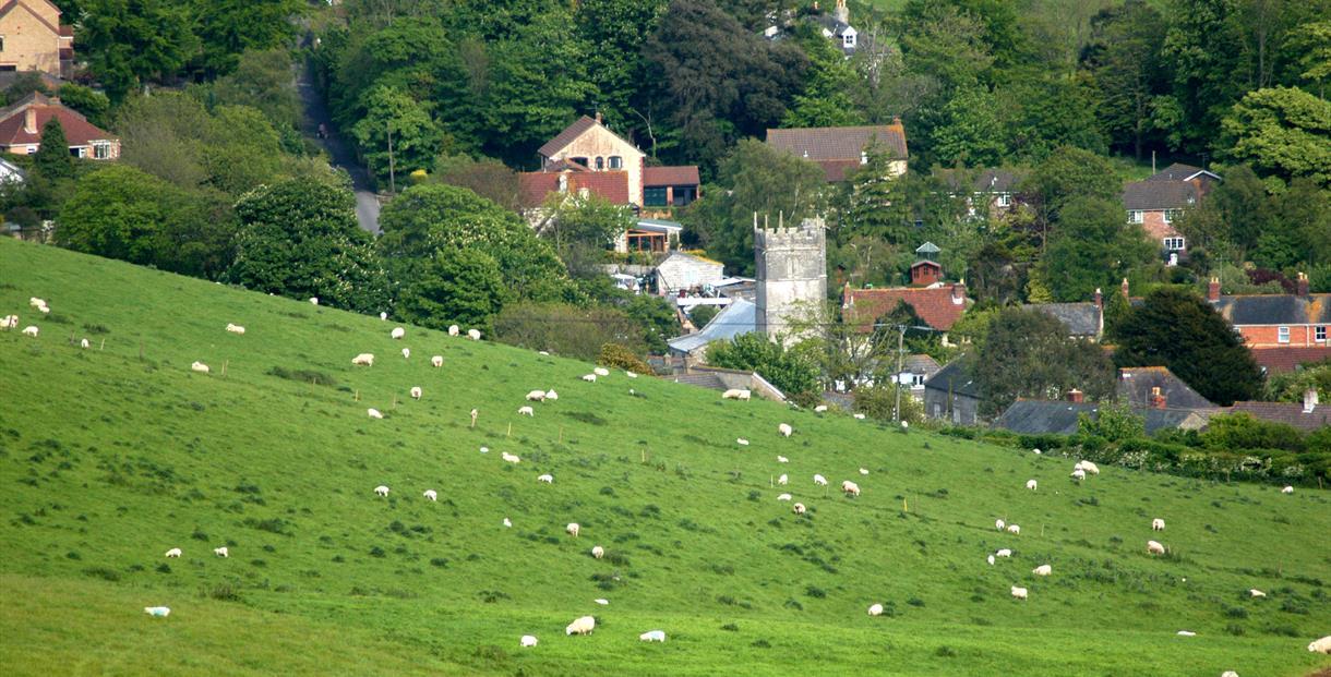 Portesham, Visit Dorset