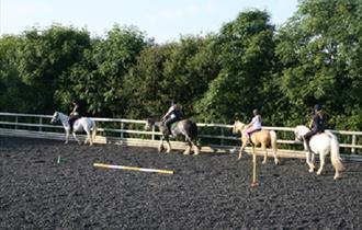 Rosewall Equestrian