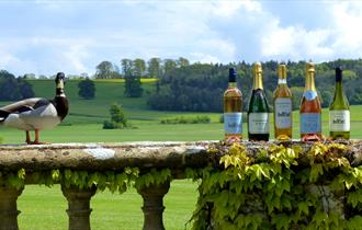 Sherborne Castle Wines