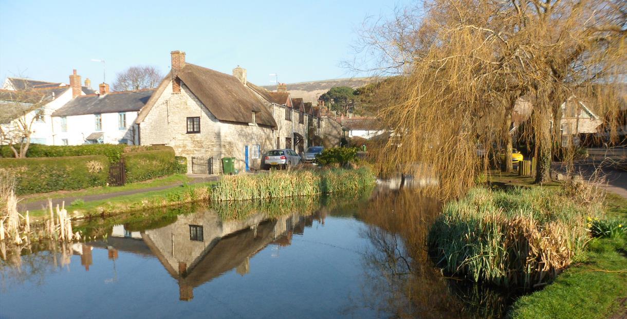 Sutton Poyntz Pond (credit Pete Russell)