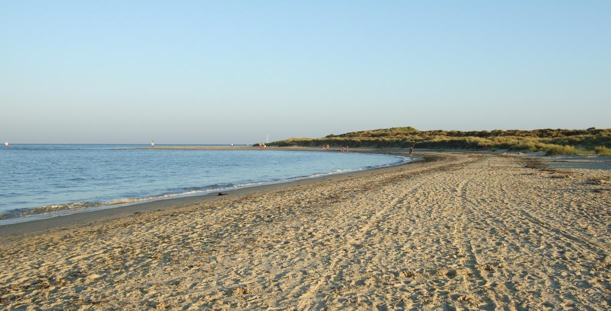 Shell Bay, Studland