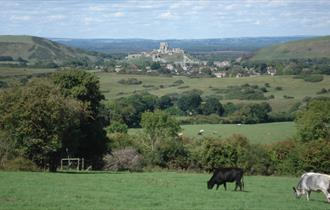 Views from Kingston towards Corfe Castle, Dorset