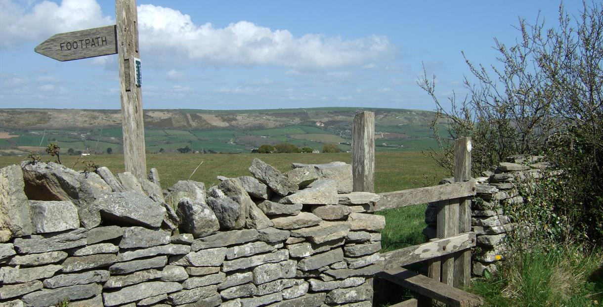 View from Acton to the Purbeck Ridge