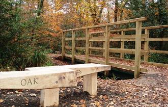 Upton Wood