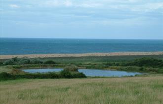 A Dorset beach