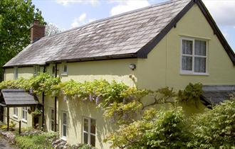 Wisteria Cottage - located in beautiful unspoilt Dorset countryside.