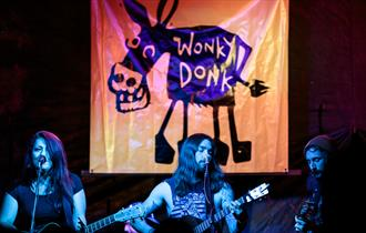 Musicians performing at Wonky Donk music festival