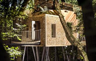 Woodman's Treehouse, Crafty Camping