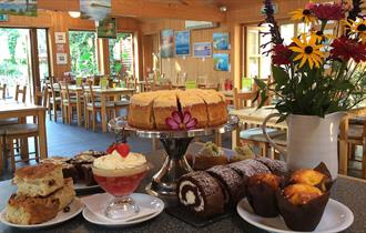 The Orchard Cafe cakes at Wareham, Dorset