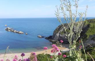 Man O' War beach and St. Oswald's Bay, Dorset